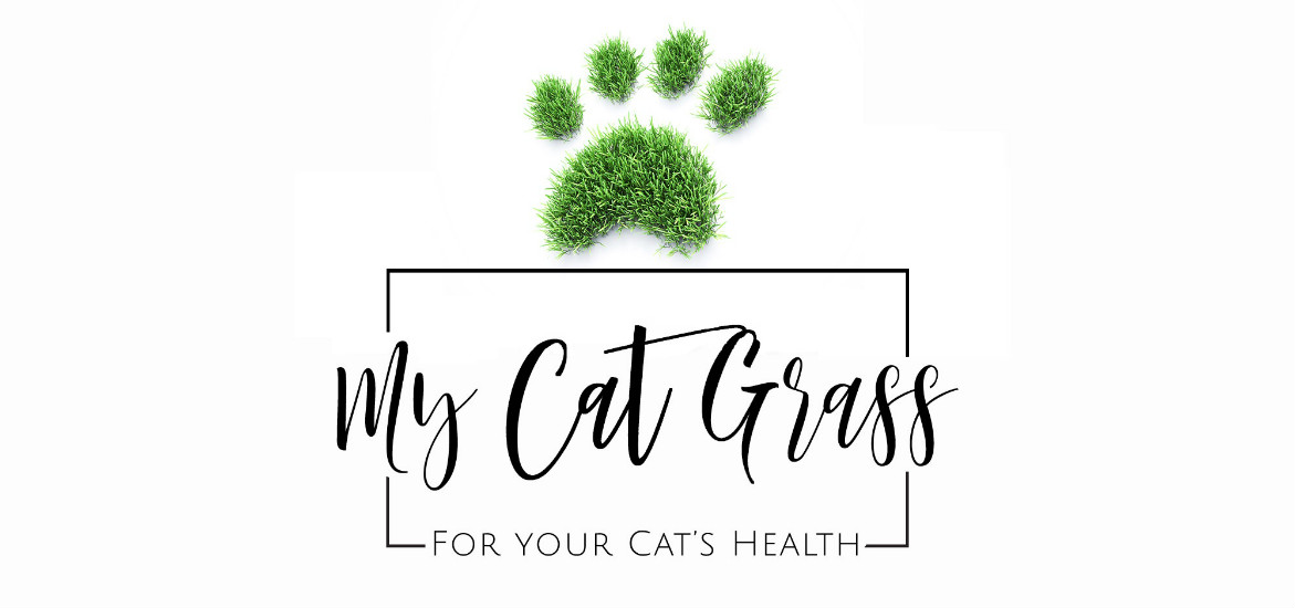 My Cat Grass Launches UK's 1st Fresh Cat Grass subscription service