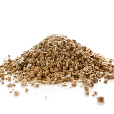 Grow Your Own Cat Grass In Vermiculite