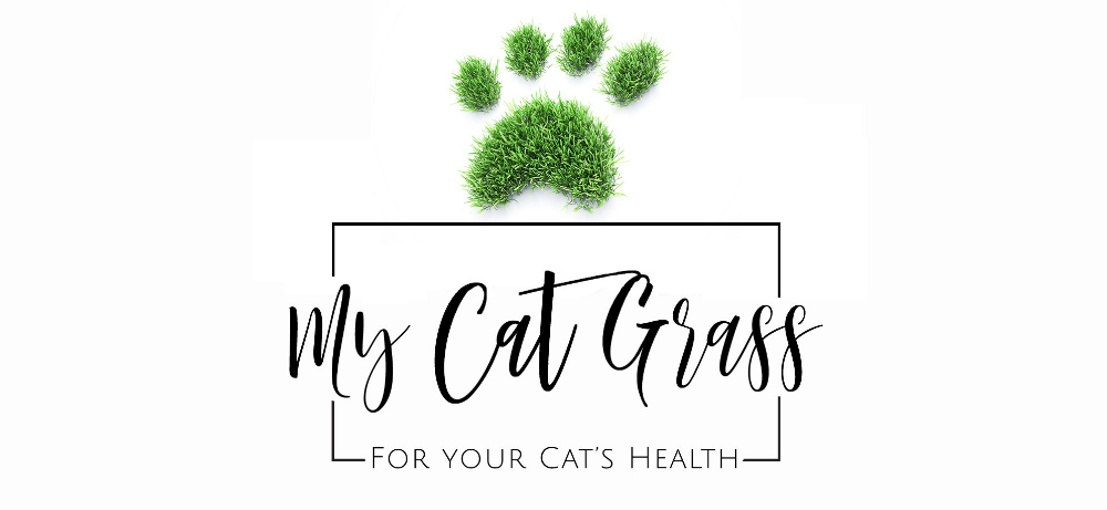 Our Story - My Cat Grass