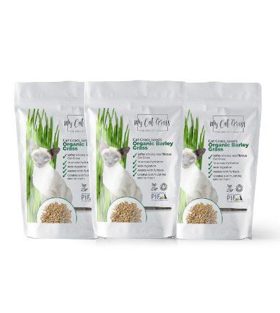 Cat Grass Seeds - Barley