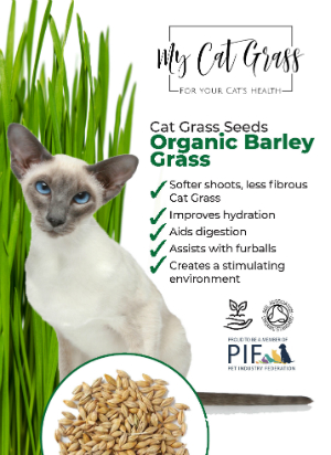 Cat Grass Seeds - Barley Grass Subscription