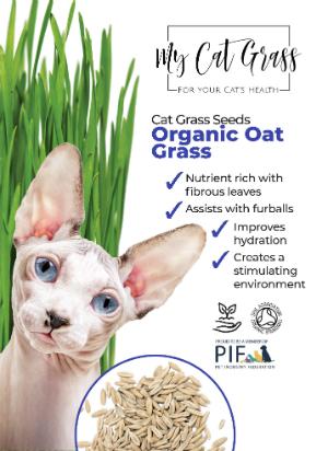 Cat Grass Seeds – Oat Grass Subscription