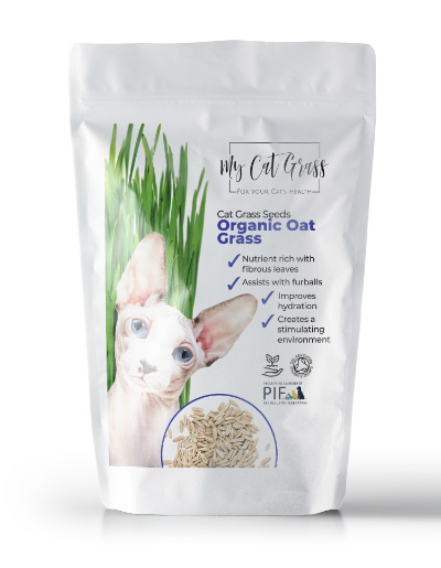 Cat Grass Seeds – Oat Grass