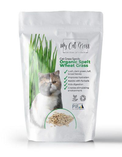 Cat Grass Seeds - Wheat