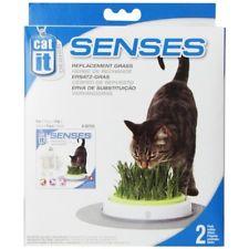 Where to Buy Cat Grass - Catit Refill Pack