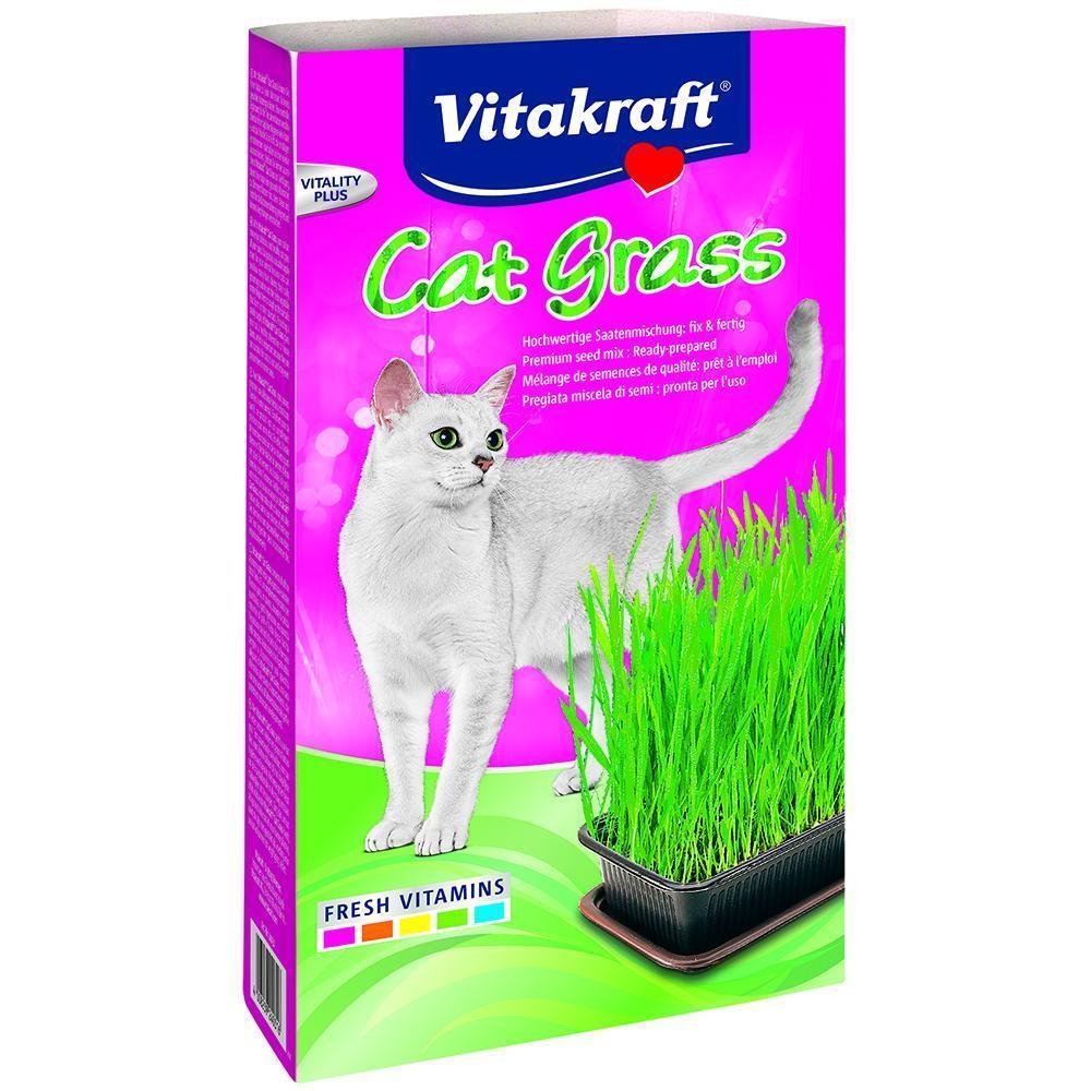 Where to buy cat grass - Vitakraft Cat Grass