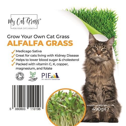 Cat Grass Kit - Alfalfa