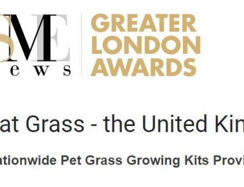 My Cat Grass Wins Another Award